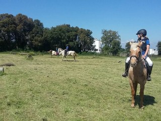 Experience on horseback by Les Gavarres